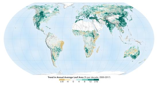 NASA研究统计的全球范围内,植被每10年平均增长率情况 图源:同上